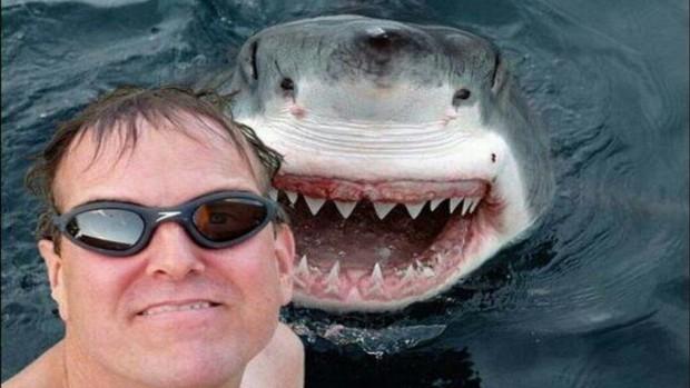 Homem tirando selfie com tubarão